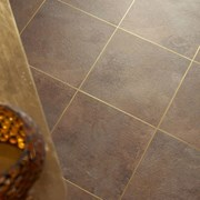 Polyflor Gold 0026 Feature Strip