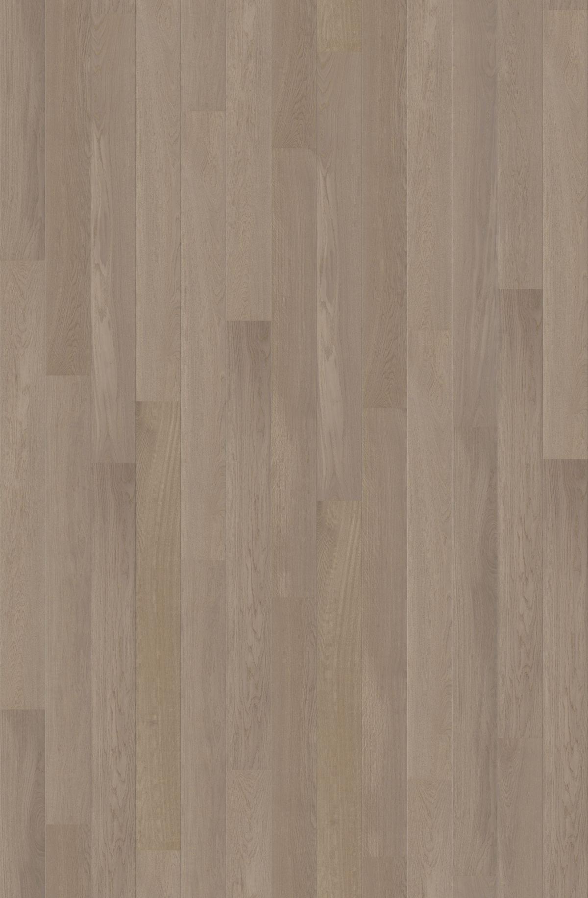 Quickstep Palazzo Fossil Oak Matt Pal1342s Engineered Wood