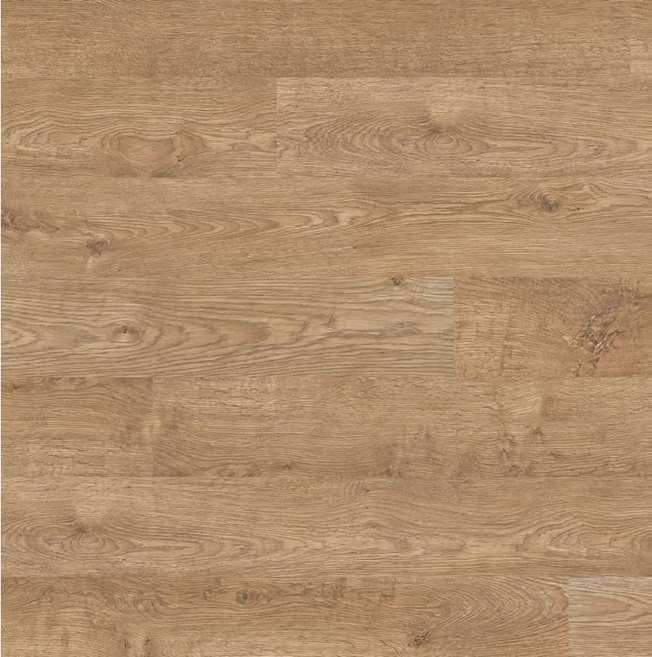 Quickstep Eligna Old Oak Matt Oiled Natural El312 Laminate Flooring