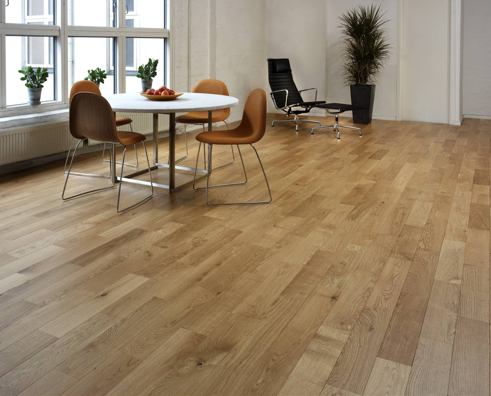 Junckers oak variation solid wood flooring for Real wood flooring