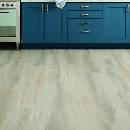 Karndean Palio Gluedown Plus Wood Collection Vinyl Flooring